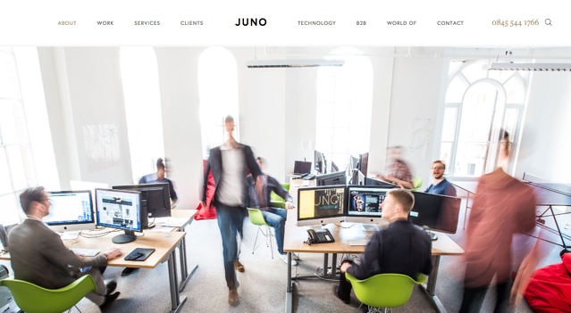 Juno-Web-Design.png