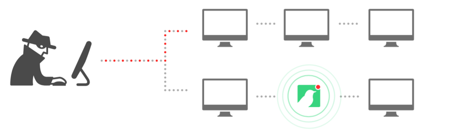 Canary and Foregenix Incident Response Services