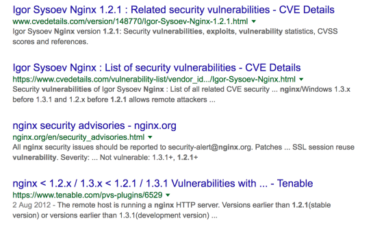 exploit-google-search.png