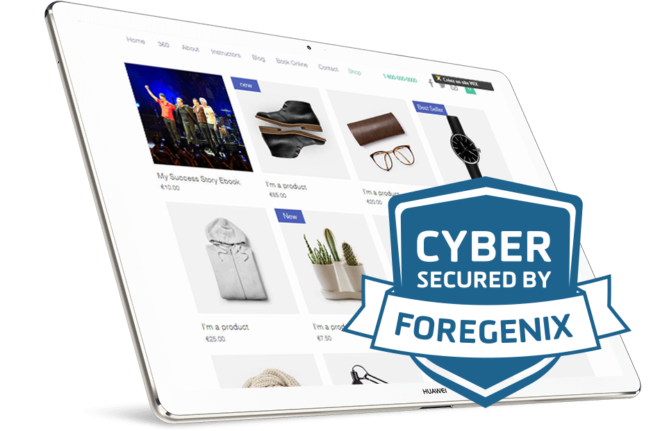 Foregenix-FGX_Web-Cyber_Security_Seal2